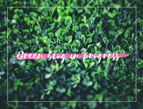 Le défi Green de Maman youpie